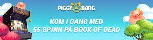 Ukas Casino: Piggy Bang